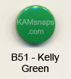 B51 Kelly Green