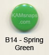 B14 Spring Green