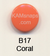 B17 Melon Orange