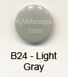 B24 Light Gray