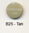 B25 Tan