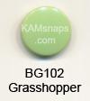 BG102 Grasshopper