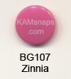 BG107 Zinnia