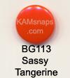 BG113 Sassy